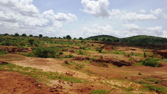 Nigeria Great Green Wall project