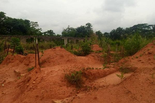 education project Anambra