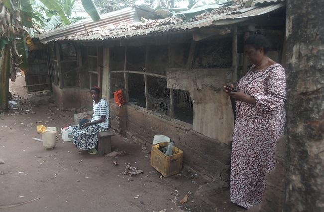 SWOFON Co-ordinator Anambra Mrs Georgina Akunyiba in her poultry farm at Nnewi