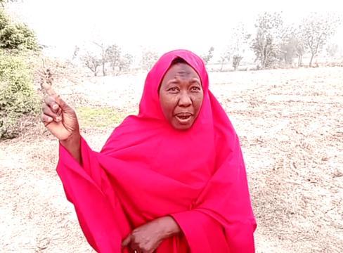 Hajj Hassana Usman leader smallholder women farmers in Tsubut community